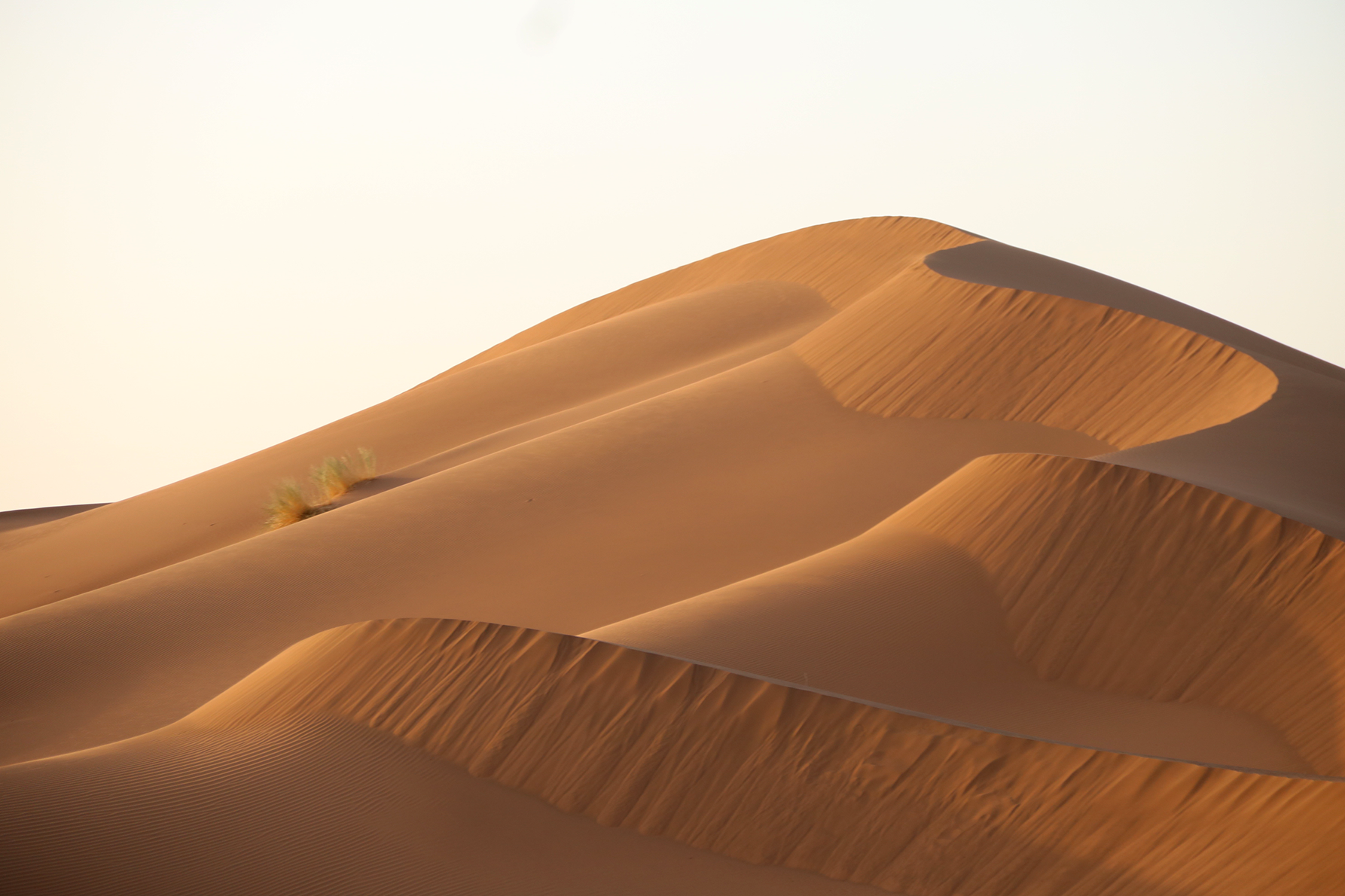 The Sahara stretches through much of North Africa, including parts of Morocco.