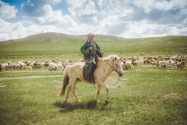 Jamadi snapped this photograph while riding in a van down a bumpy dirt road in Mongolia.