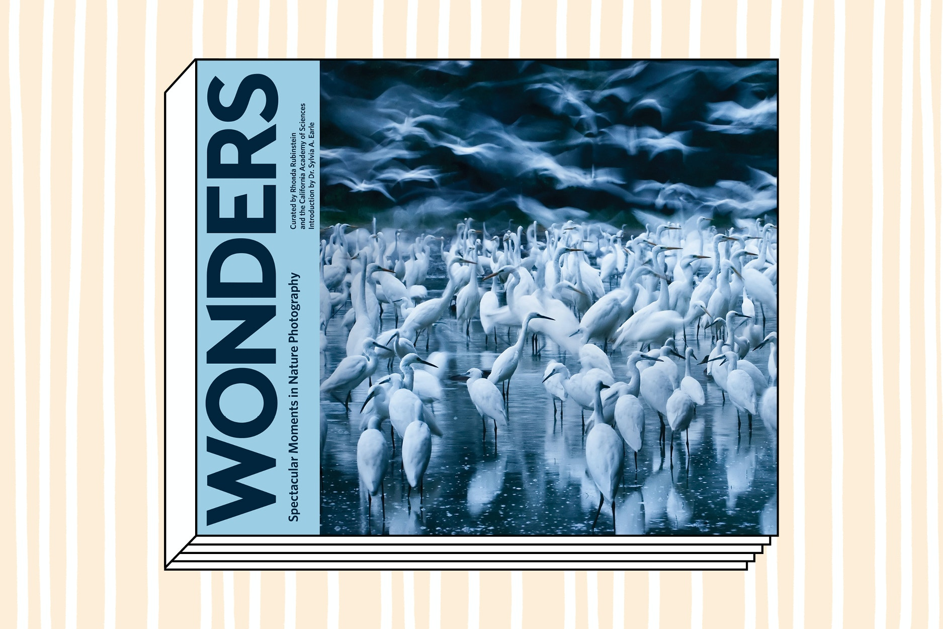 Wonders: Spectacular Moments in Nature Photography (Chronicle Books, 2018)