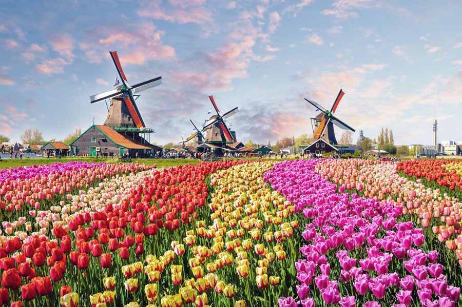 The Conservatorium Hotel in Amsterdam can secure tickets to the Keukenhof flower park, which usually sell out well in advance.