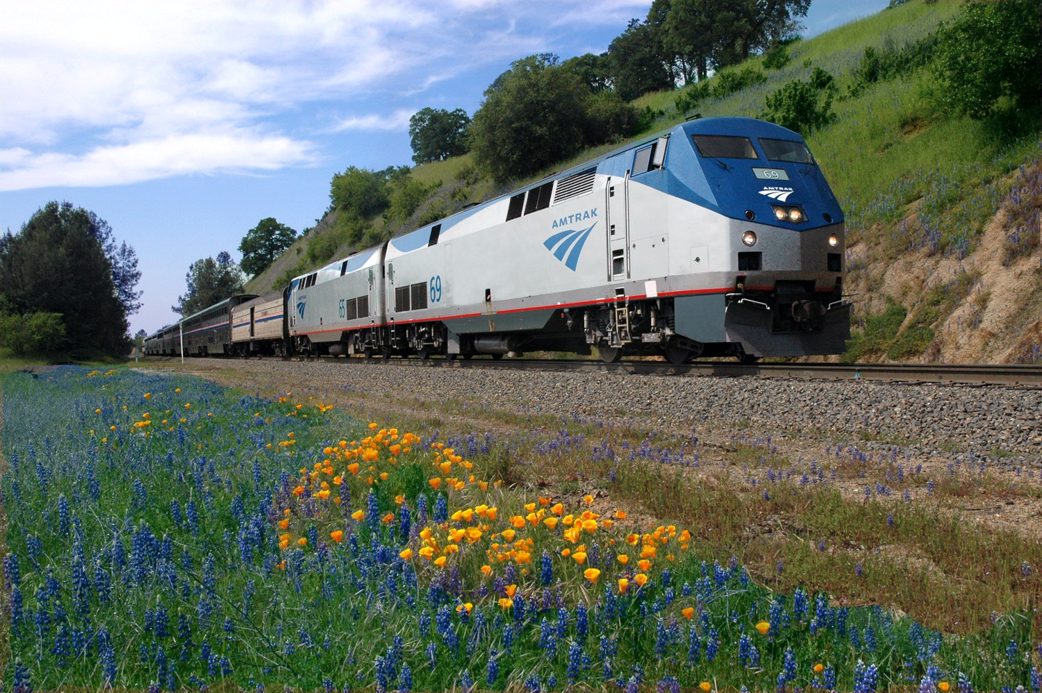 You'll get to see wildflowers blossom throughout the Rocky Mountains and the Sierra Nevadas on the California Zephyr.