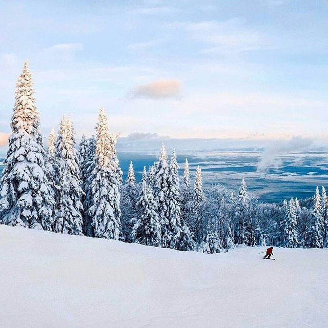 Fresh powder dreams.