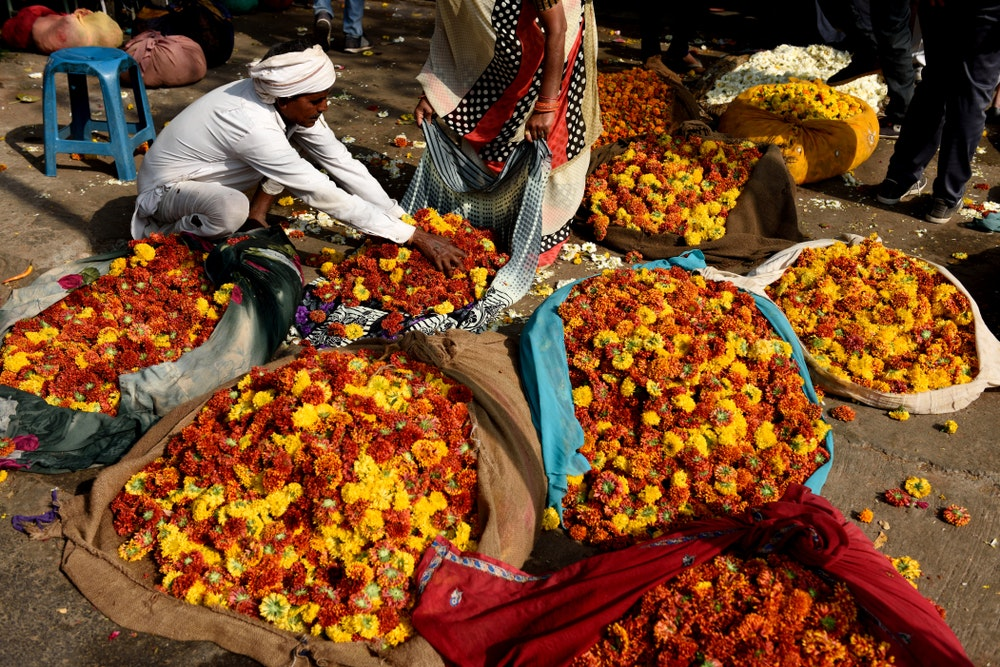 At a flower market in Jaipur