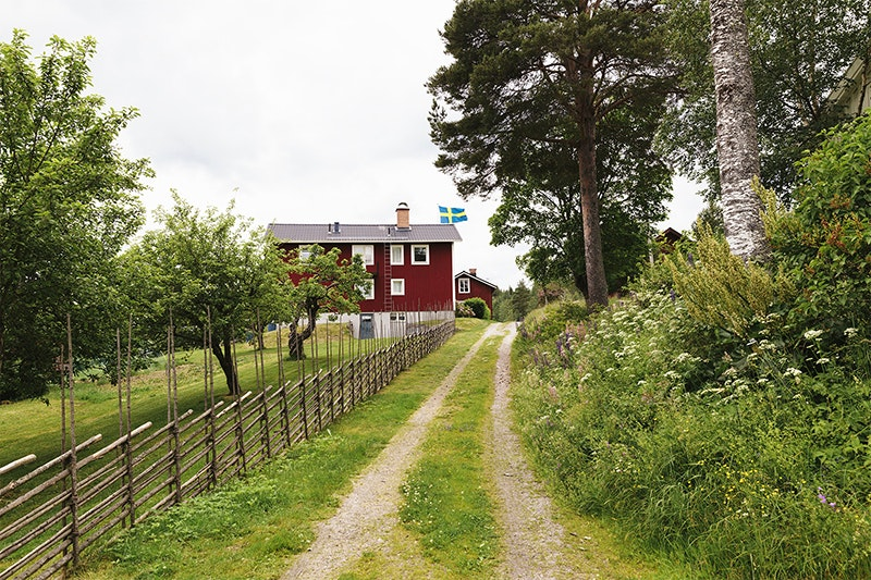 Many country houses in Sweden are painted with falu dye, a bright red derived from copper from local quarries.