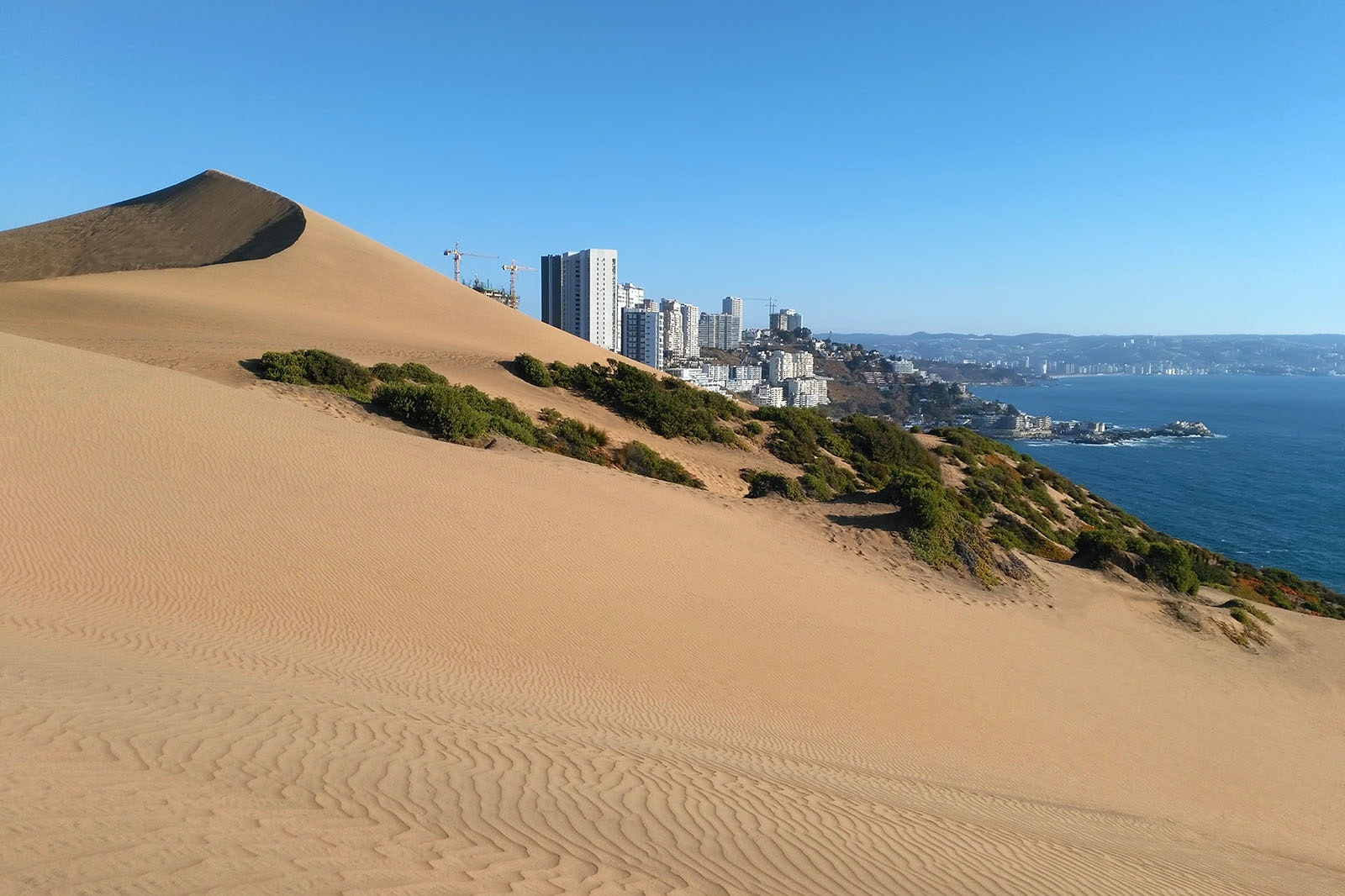 The dunes outside of Concón have some of the best views of the area.