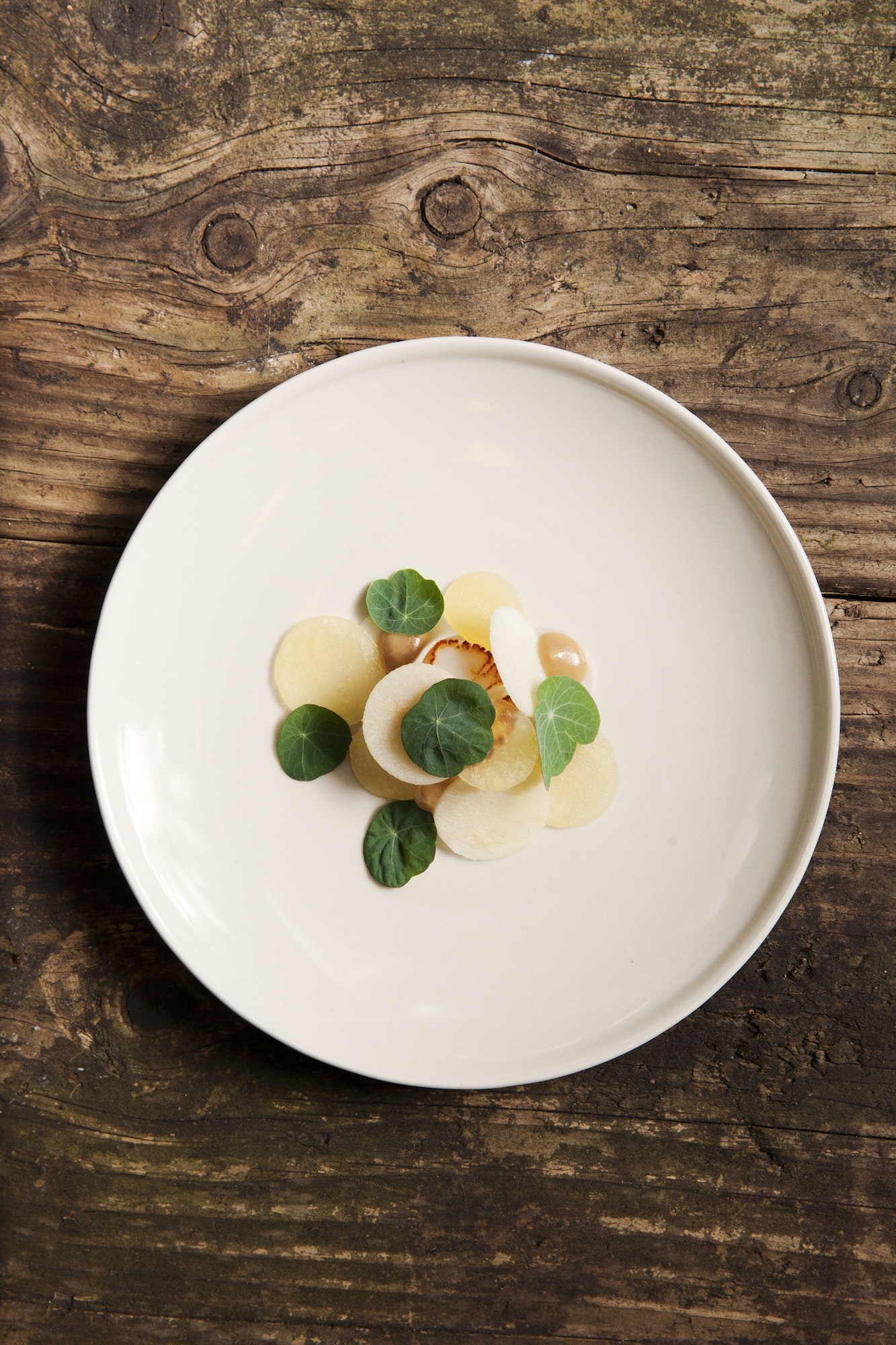 A foraged sea supper from Holdfast Diner features scallop, turnip, apple, miso, and nasturtium.