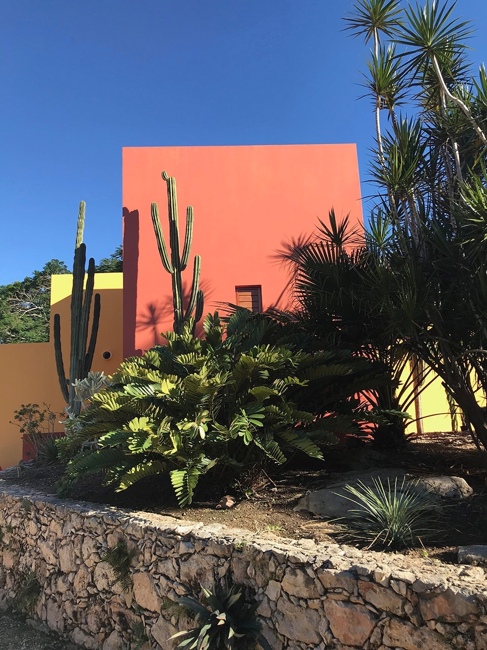 Beautifully designed Airbnbs like Casa del Limonero are easy to book in Mérida.