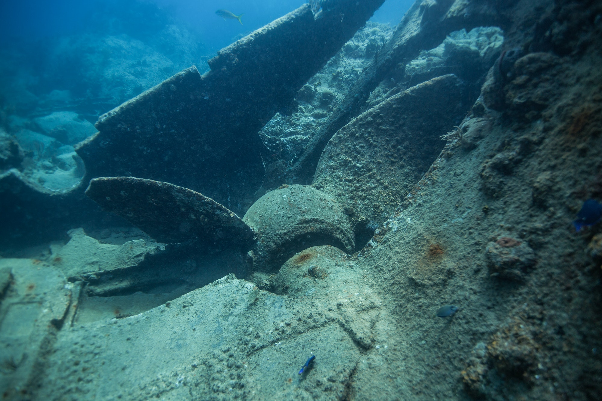 "Just off Salt Island, the wreck of the RMS ""Rhone"" rests in 20 to 85 feet of water."