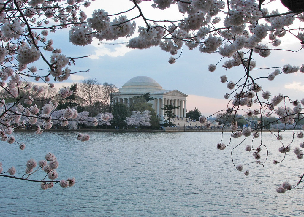 The Jefferson Monument in Washington, D.C.