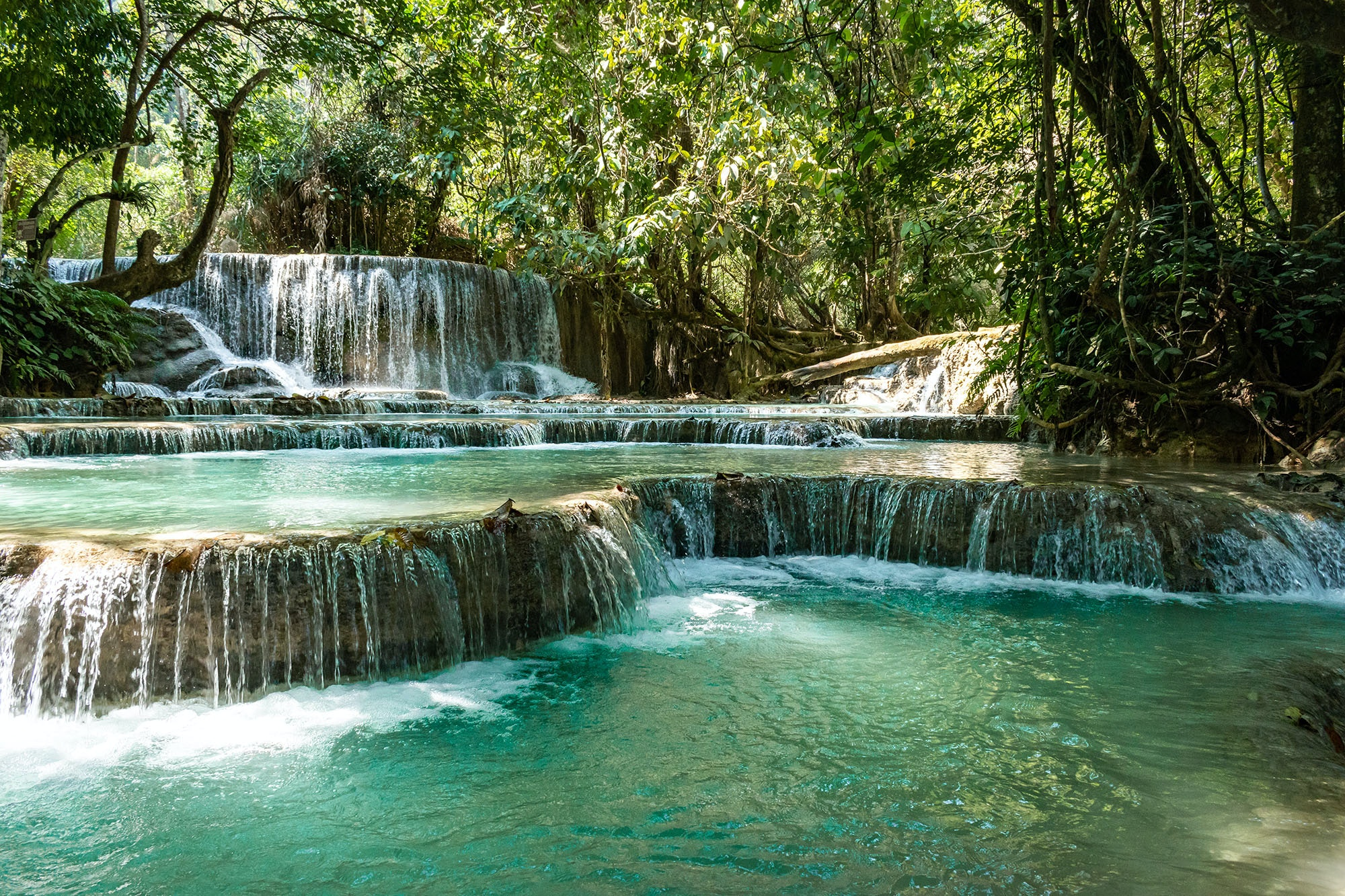 Most of the pools at the Kuang Si waterfalls are open, but a few are closed as sacred sites.