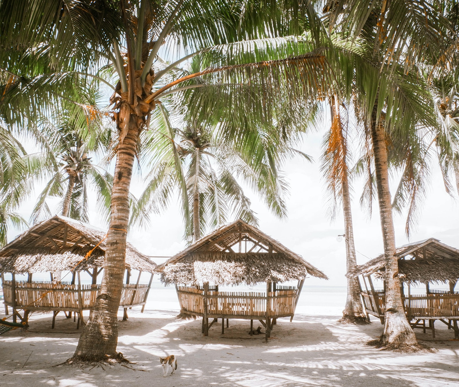 Third-party financing companies work with travel providers like United Vacations, Norwegian Cruise Line, and Expedia, so that you can book your trip now, and pay for it later.