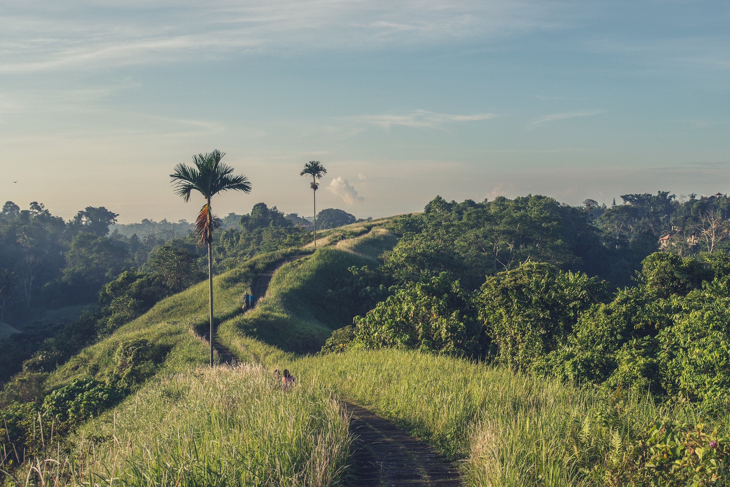 Bali–a small, green island part of Indonesia–is well known for its beaches, religious sites, and meditation retreats.