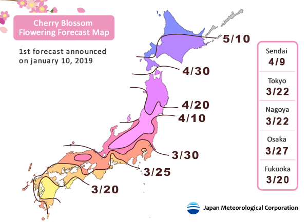 The dates predicted for when Japan's cherry blossoms will start to flower in 2019