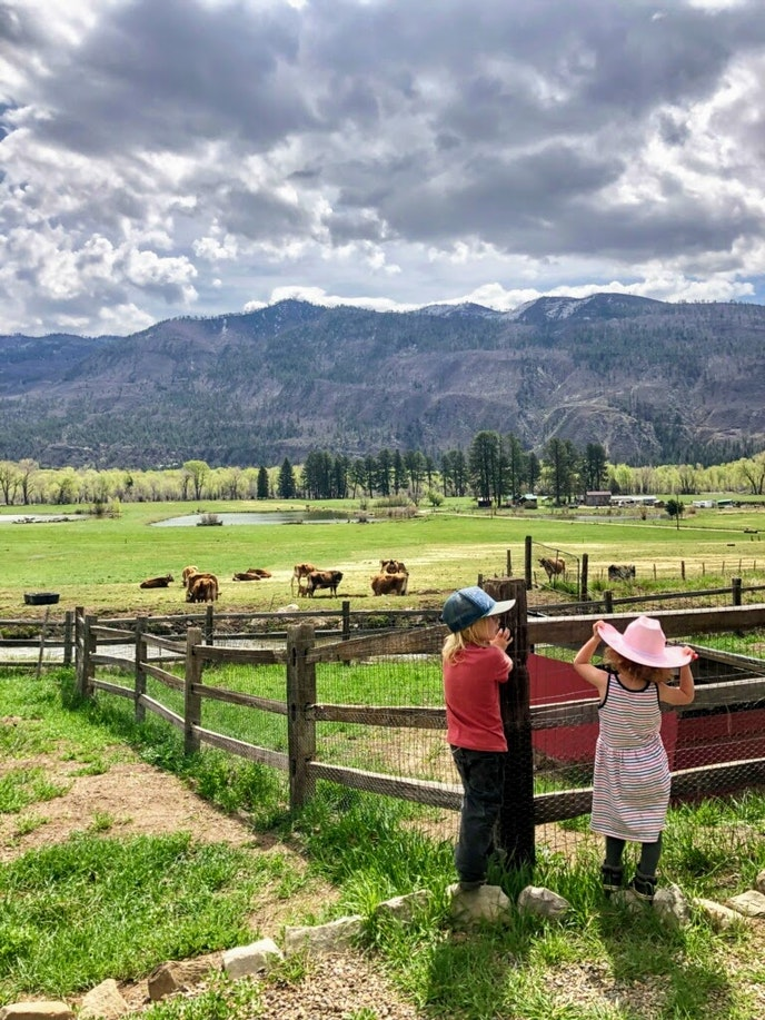 Kiddos and adults alike can learn about life on a working ranch at James Ranch outside of Durango.