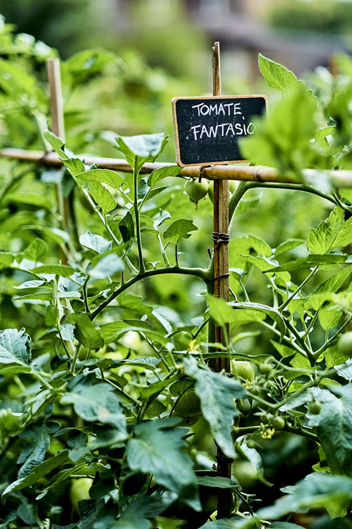 Le George, the restaurant at Four Seasons Hotel George V, maintains an organic garden on the grounds of Versailles.
