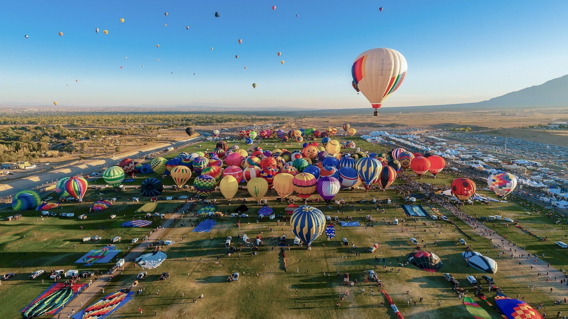 Hot air balloons rise over Albuquerque.