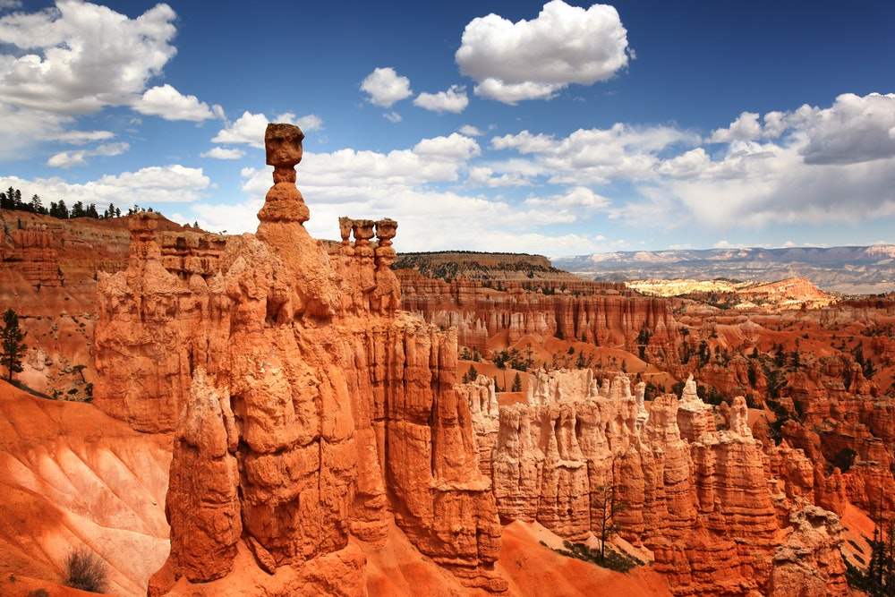 . . .  then rub elbows with hoodoos in Bryce Canyon the next.