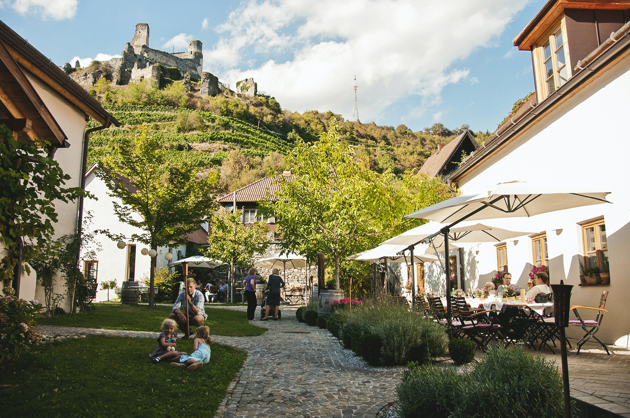 Weingut Nigl is situated in lower Austria's Kremstal (Krems Valley), not far from the historic town of Krems.