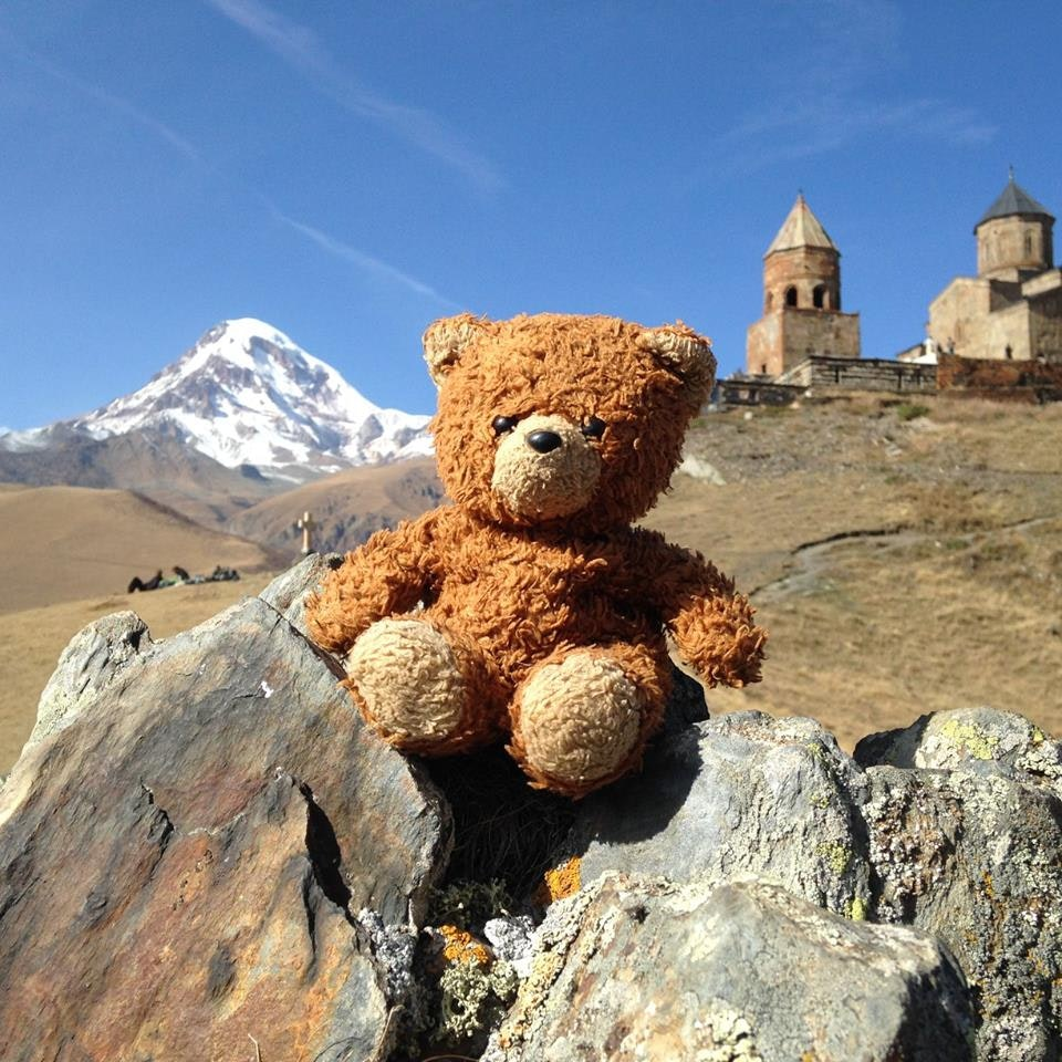 Follow Trigger the bear's travels around the world!