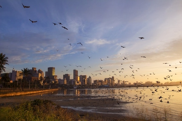 Morning view from Wilsons Wharf in Durban