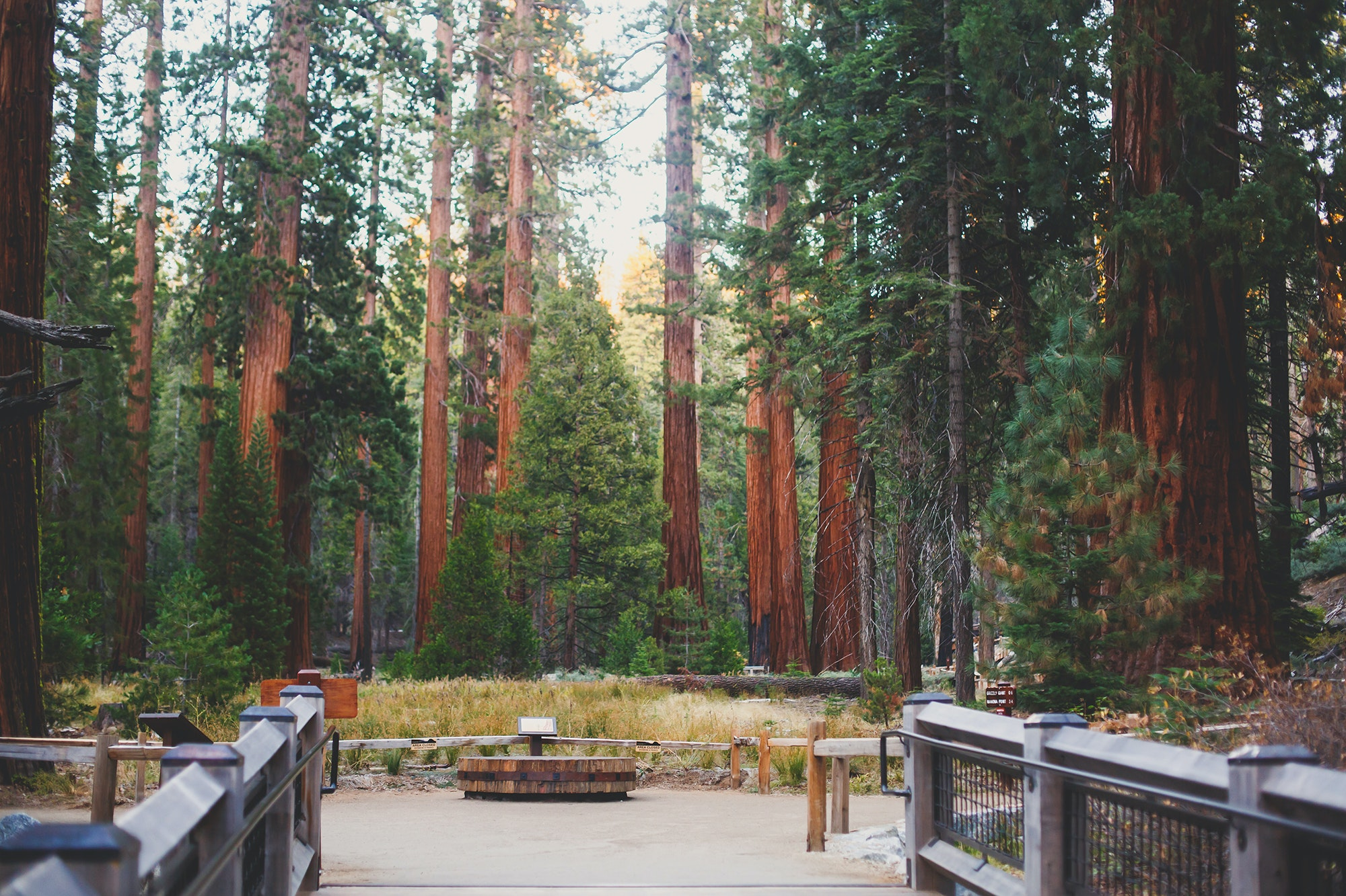 Popular areas like Yosemite's Mariposa Grove are likely to be closed to limit potential distruction to the area.