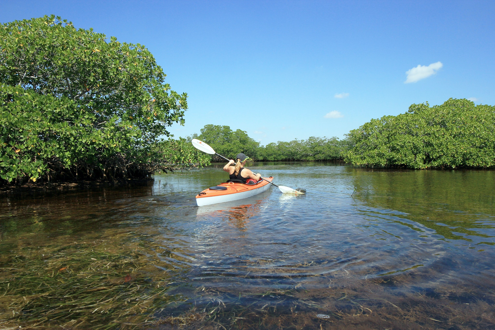 Escape from the bustle of Miami with a kayak through Biscayne National Park.