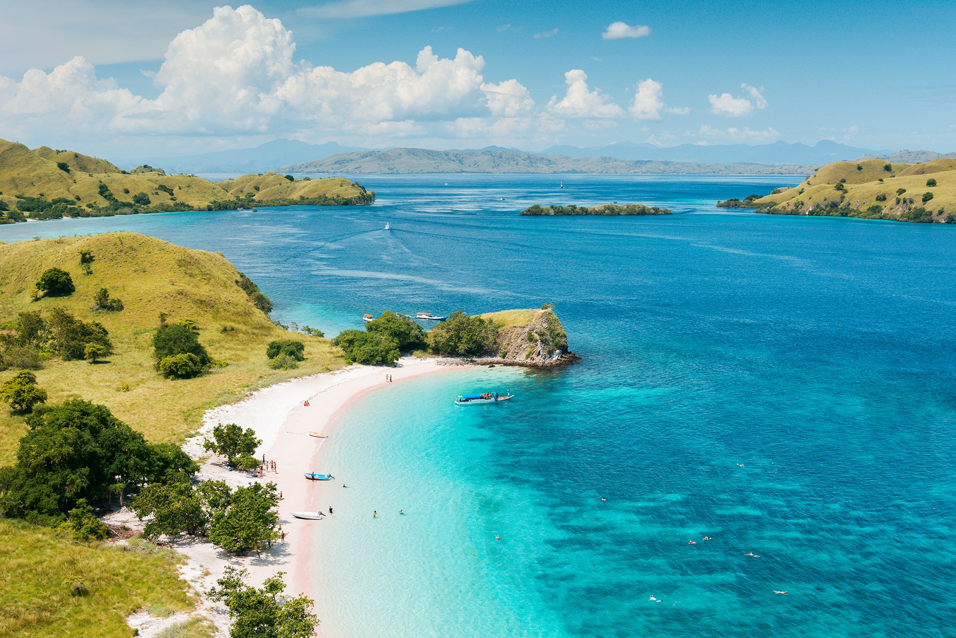 The most famous residents of Pink Beach, on Komodo Island, are its prehistoric-looking komodo dragons.