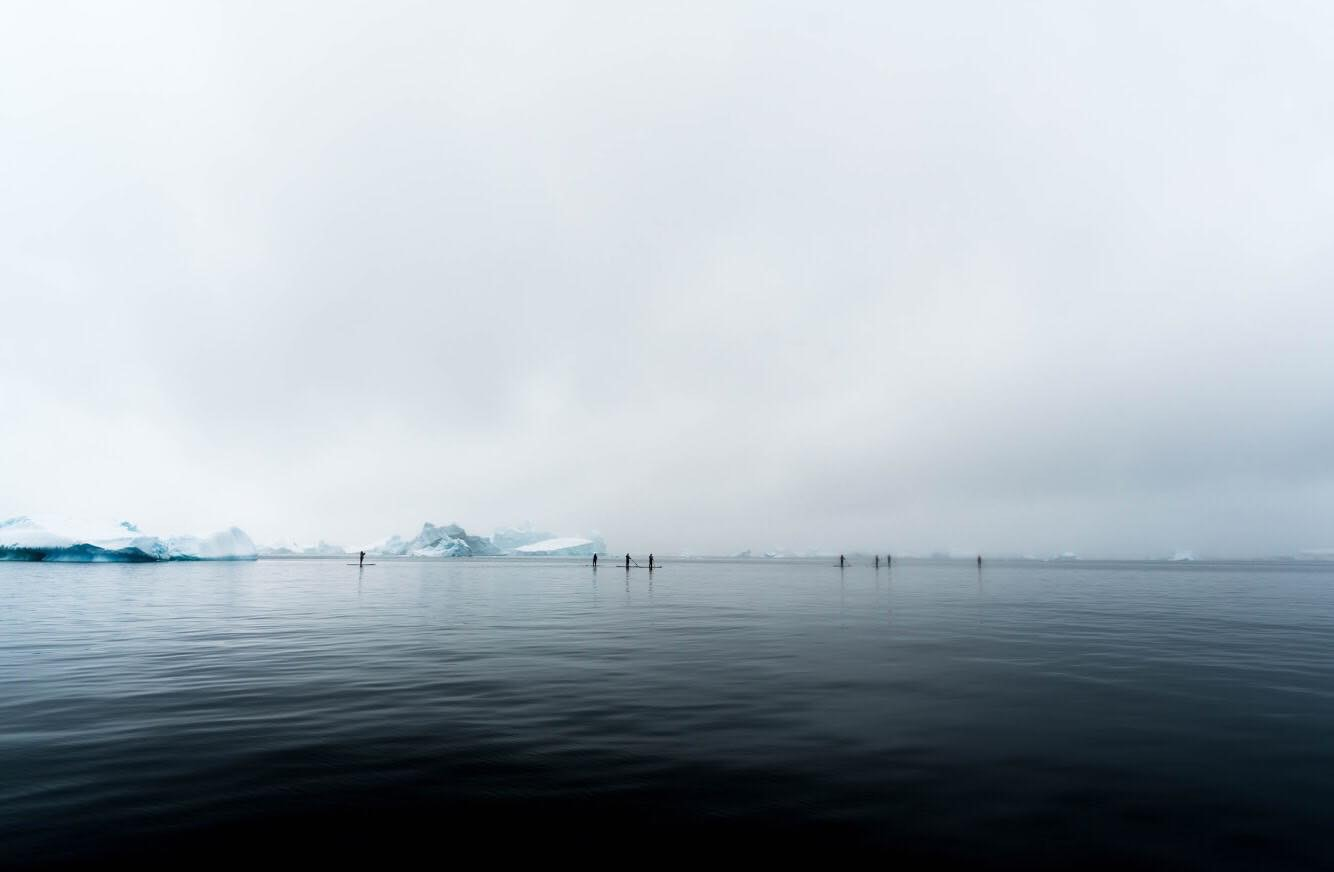 Paddleboarders in Antarctica. Photo by Fraser Morton