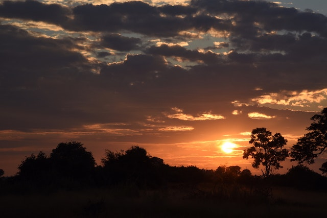 Sunset in the Okavango Delta, Botswana