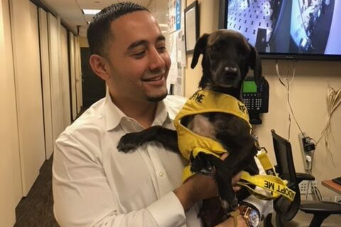 Fontainebleau's front office manager, Alfred Reynoso, met his dog, Kali, through an internal adoption program.