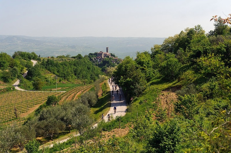 The Parenzana cycling route passes through picturesque fishing villages, hilltop towns, and fertile, vineyard-dotted valleys along the Istrian Peninsula.