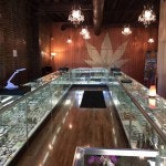 Essential Tips for a Seattle Weed Tour