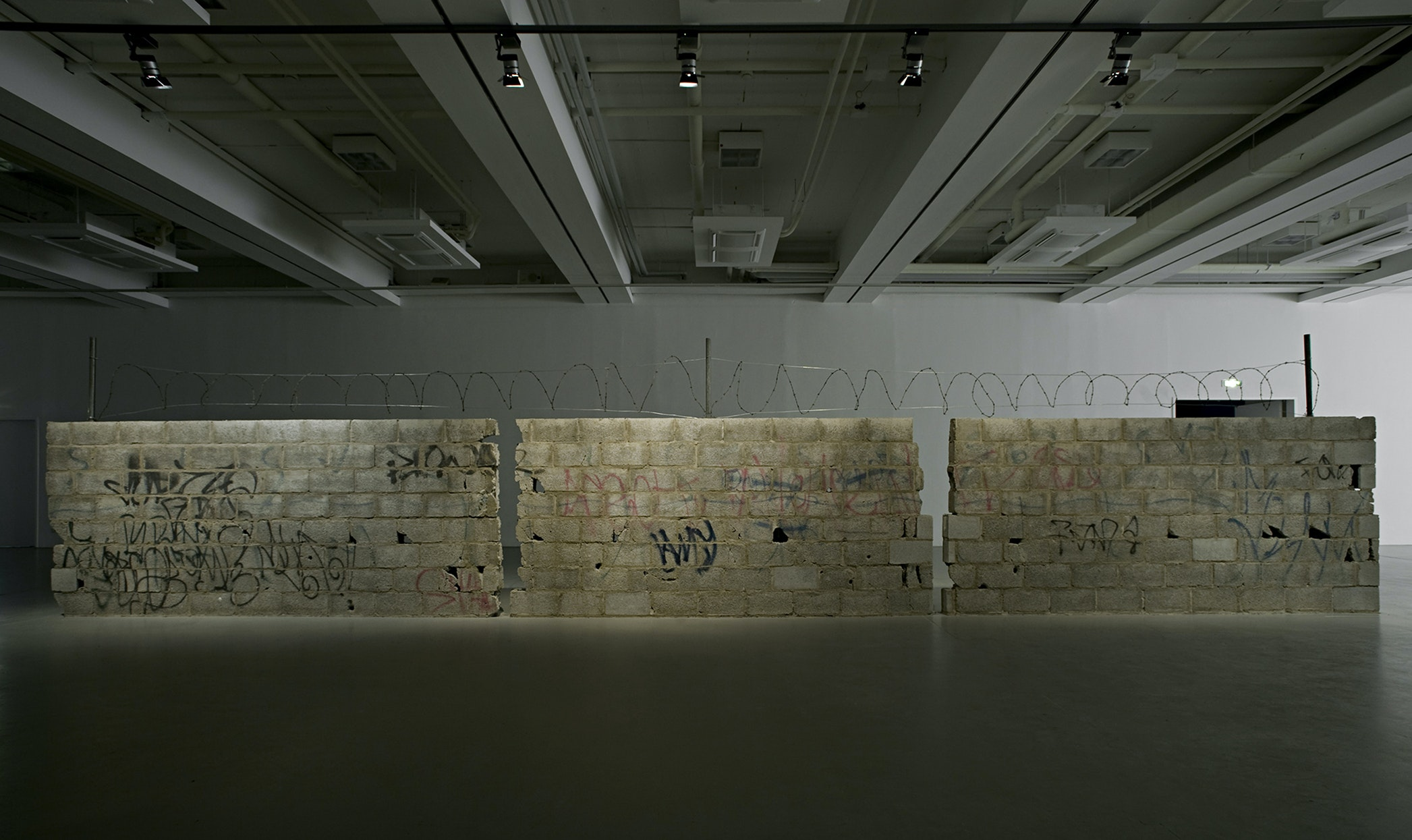 """Teresa Margolies's """"Muro Ciudad Juarez"""" is one of the pieces selected by curator Ralph Rugoff for the Biennale this year."""