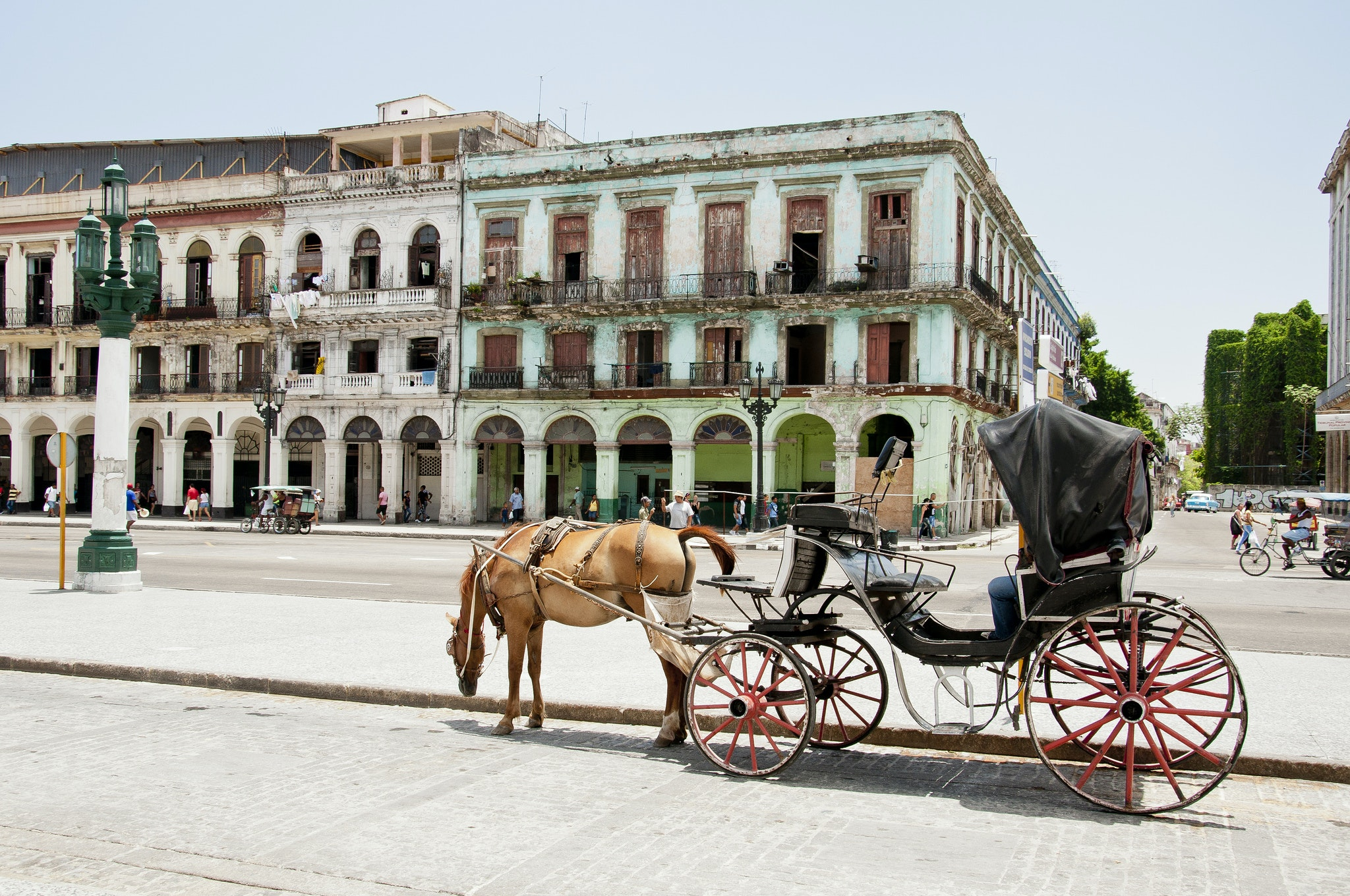 Cuba, just 485 miles off the coast of Florida, offers both urban vibes and nature-filled adventures.
