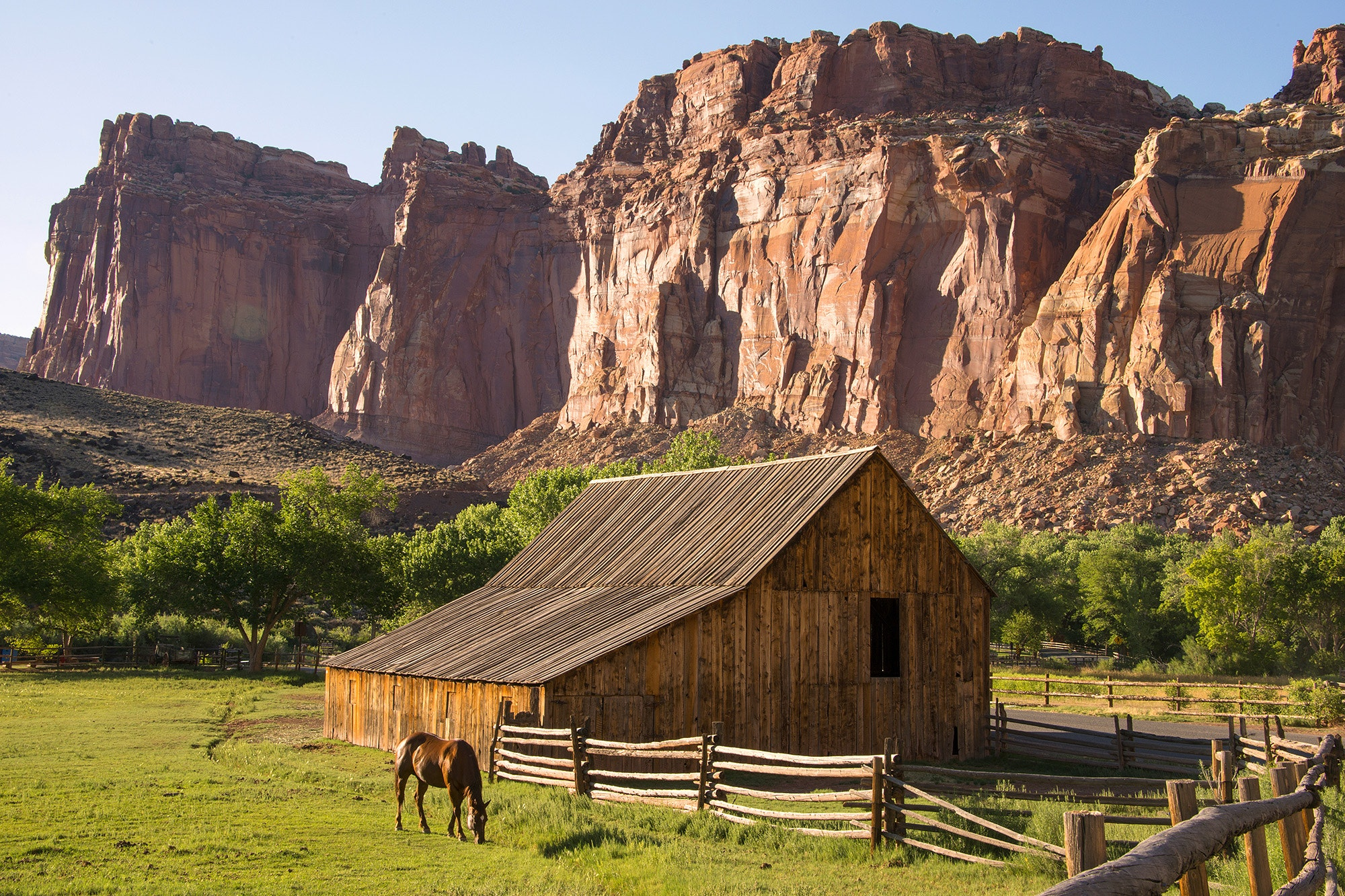 Near the Gifford Homestead, the rocks of Capitol Reef become fecund farmland.
