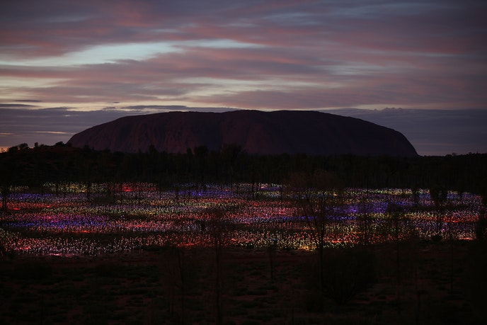 """The """"Field of Light Uluru"""" is one of the most popular light installations in the world."""