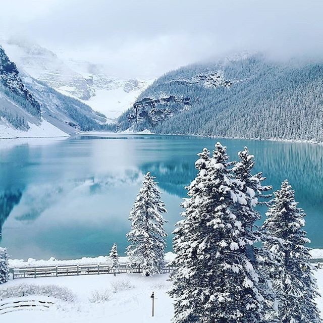 @breanna_nico1e spotted this winter wonderland at Fairmont Chateau Lake Louise @fairmonthotels.