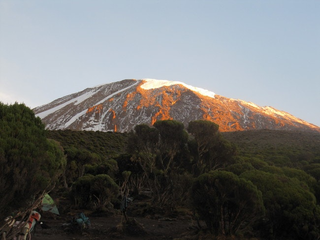 Glacier view on a clear mountain morning from the forested southern slopes of Kilimanjaro