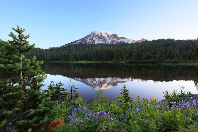 A 2.75-mile loop leads hikers to Reflection Lakes in Mount Rainier National Park.