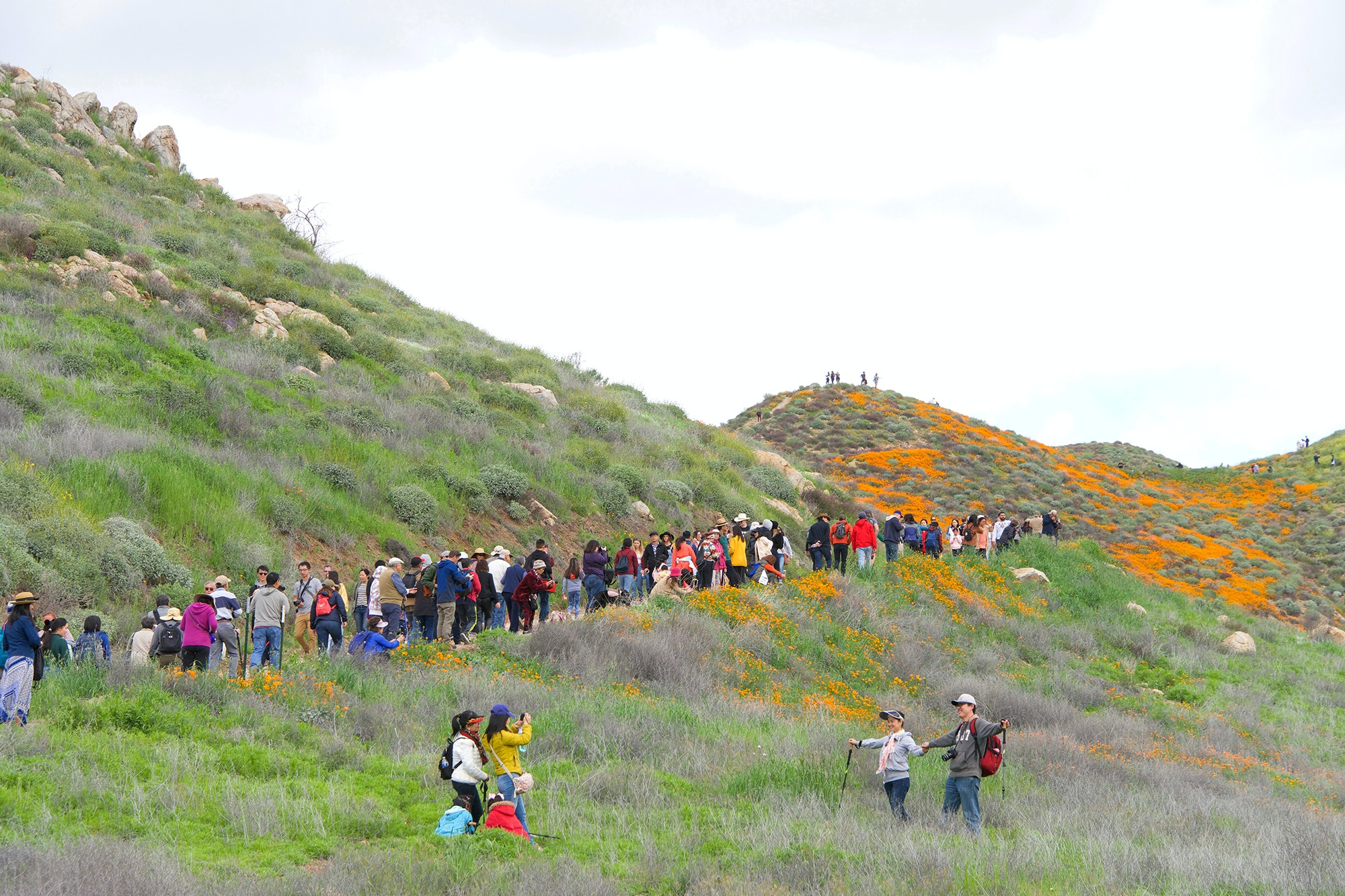 Thousands of visitors have arrived in Lake Elsinore each weekend to see the super bloom.