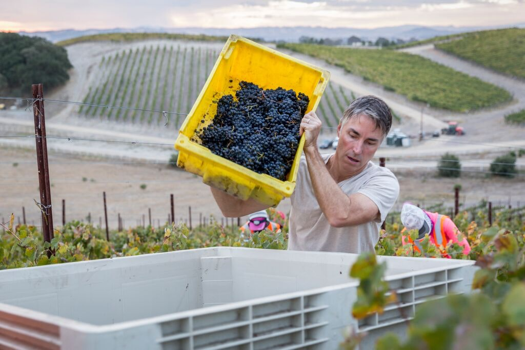 Booker is noted for its Rhône-centric portfolio of wines, sprinkled with some more unexpected finds, like tempranillo, the famous grape of Rioja.