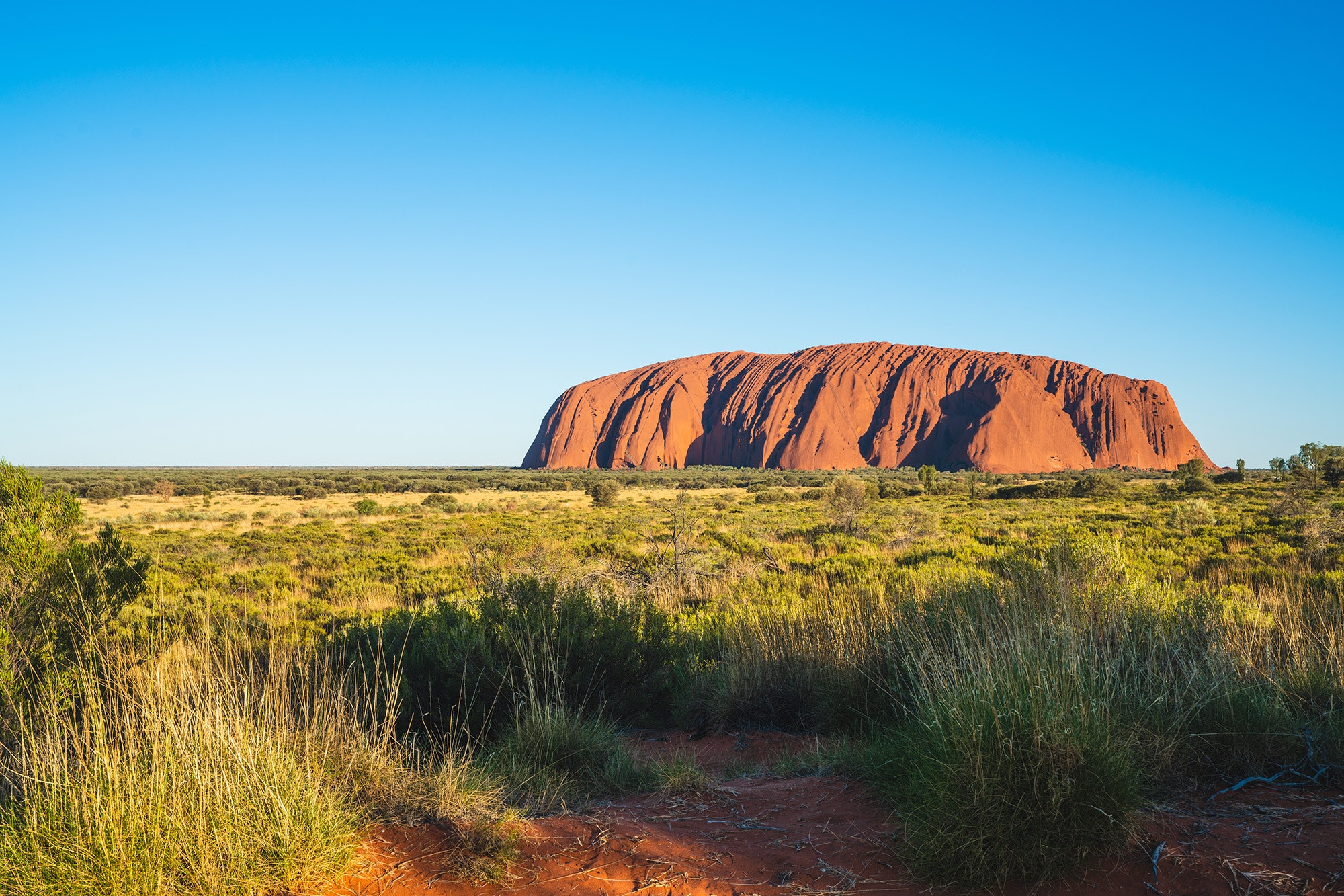 Ranger-lead tours around Uluru offer adventure-seekers insight into the geologic and cultural history of the rock.