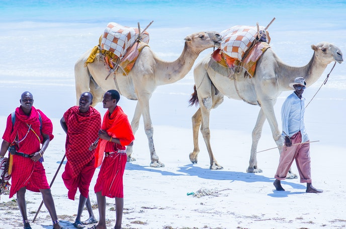 Camels join ranks with the beach bums in the silvery sands and clear waters of Kenya's Diani Beach.