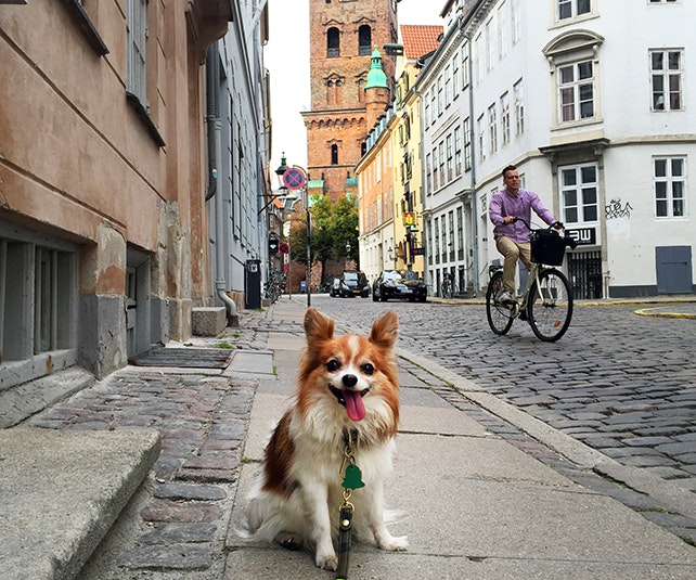 Copenhagen's quiet, uncluttered streets are perfect for wandering
