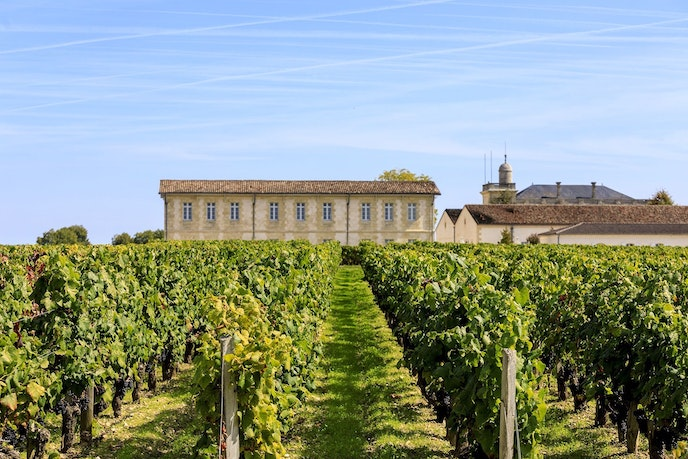 River cruises in the Bordeaux region often include visits to vineyards and chateaus.