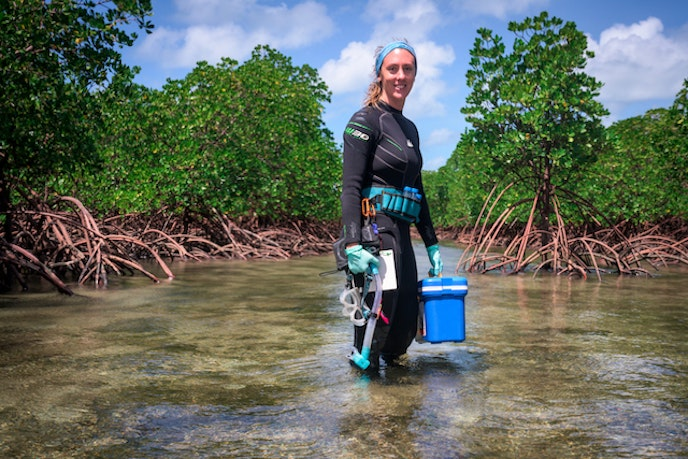 Marine biologist Emma Camp has devoted her career to studying and preserving coral reefs.