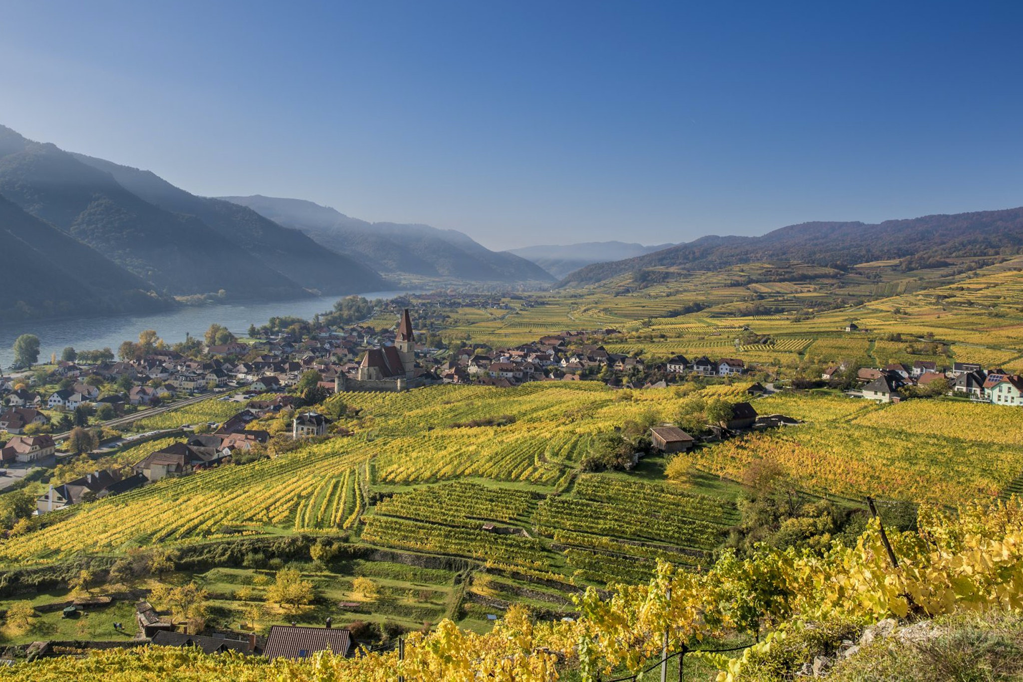 Weingut Rudi Pichler cultivates 37 acres of vineyard in the UNESCO-listed Wachau Valley.