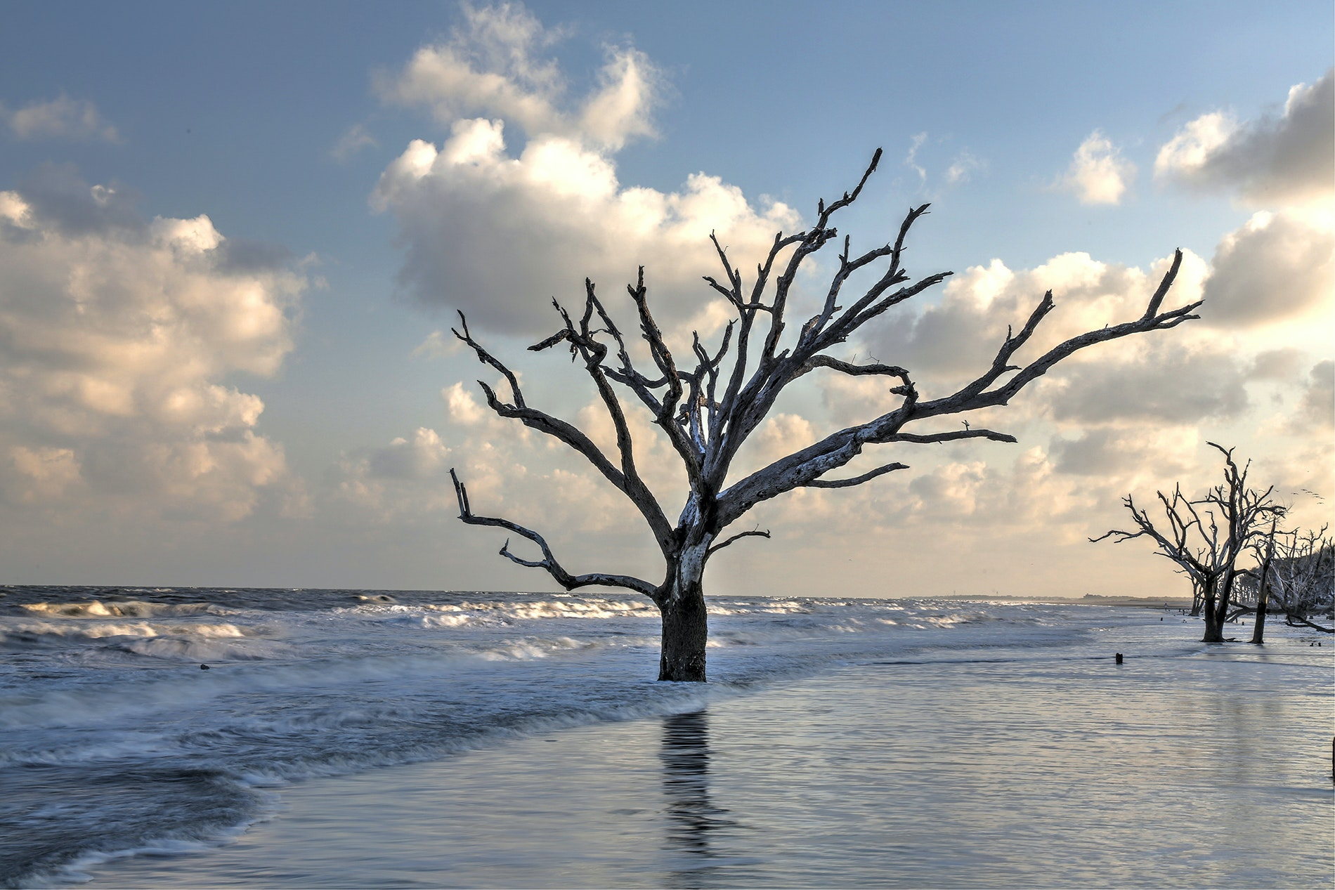 A walk along these eerily beautiful beaches reveals the encroaching ocean tides.