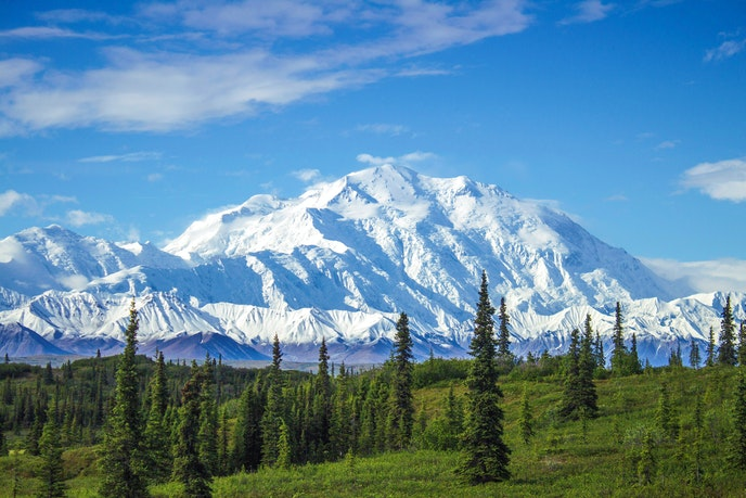 Denali is the tallest mountain peak in North America.