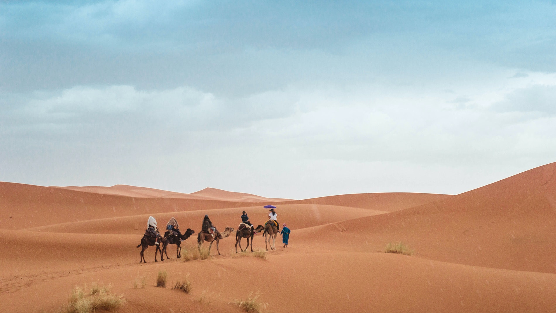 Aries are encouraged to get far away from anything they have ever known in 2019. A trip through the Sahara Desert on camelback, perhaps?